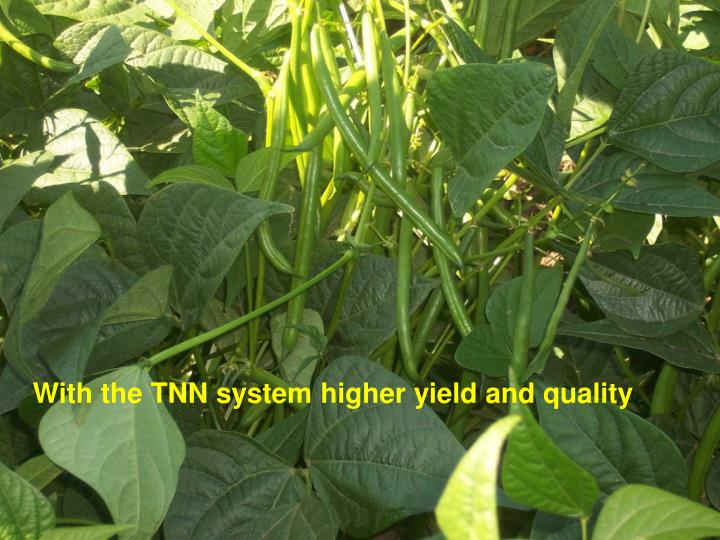 With the TNN system higher yield and quality