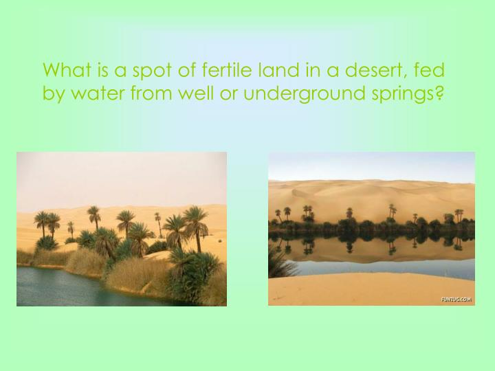 What is a spot of fertile land in a desert, fed by water from well or underground springs?