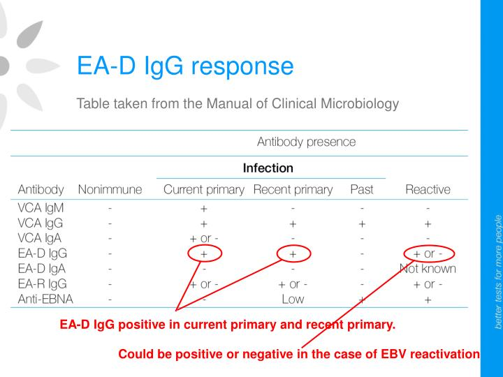 EA-D IgG positive in current primary and recent primary.