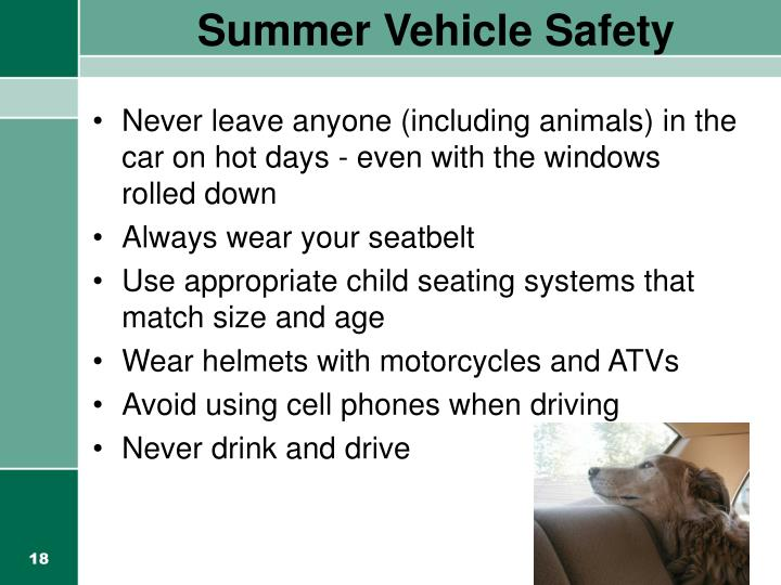 Summer Vehicle Safety