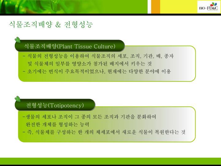 식물조직배양