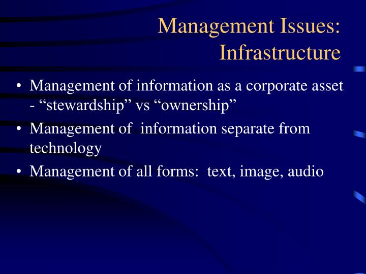"""Management of information as a corporate asset - """"stewardship"""" vs """"ownership"""""""