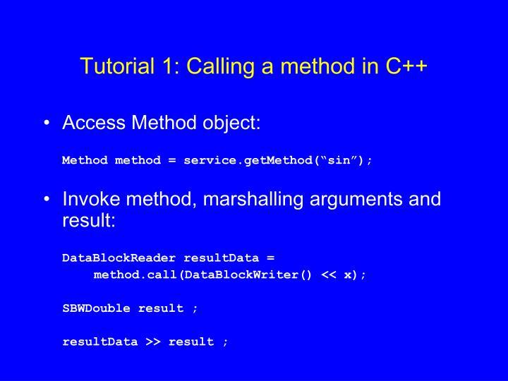 Tutorial 1: Calling a method in C++