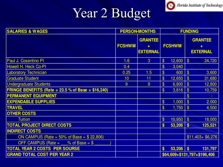 Year 2 Budget