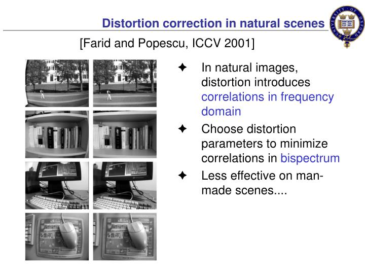 Distortion correction in natural scenes