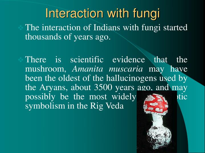 Interaction with fungi