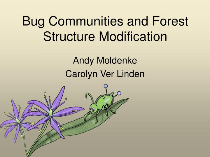 PPT - Bug Communities and Forest Structure Modification