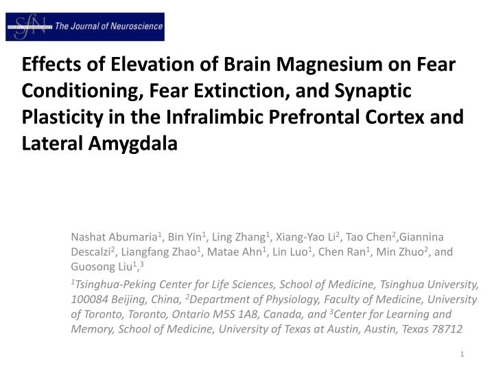Effects of Elevation of Brain Magnesium on Fear Conditioning, Fear Extinction, and Synaptic Plastici...