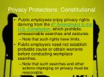 privacy protections constitutional
