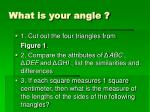 what is your angle1