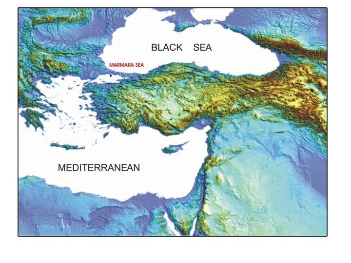Outline seismoturbidites as proxies of past earthquakes