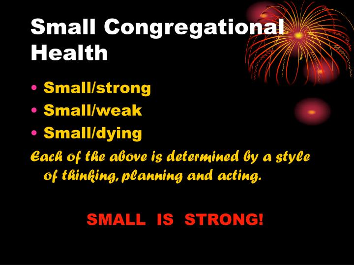 Small Congregational Health