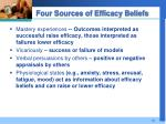 four sources of efficacy beliefs