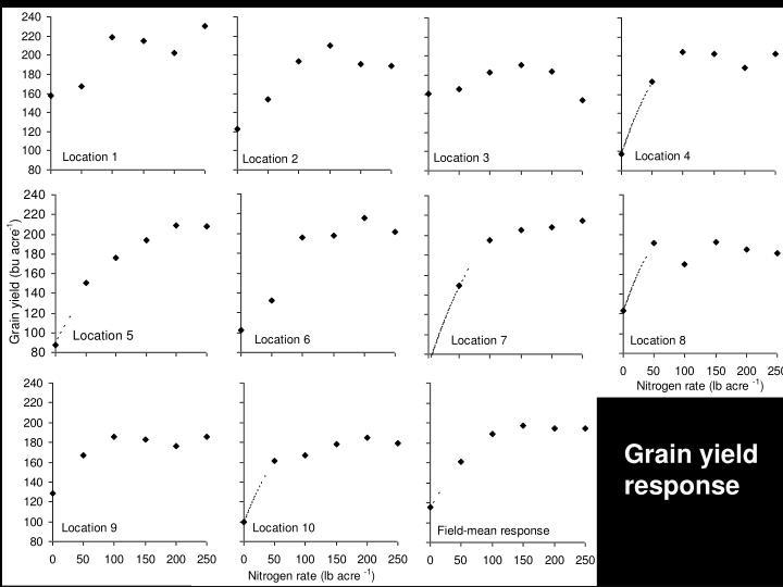 Grain yield response