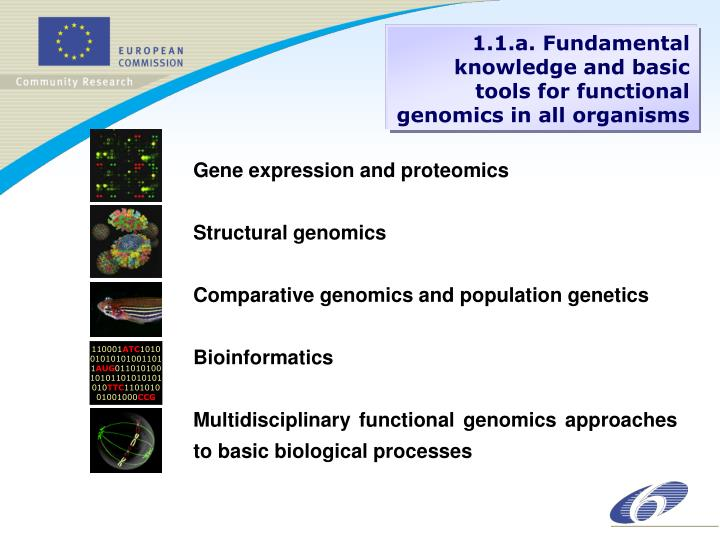 Gene expression and proteomics