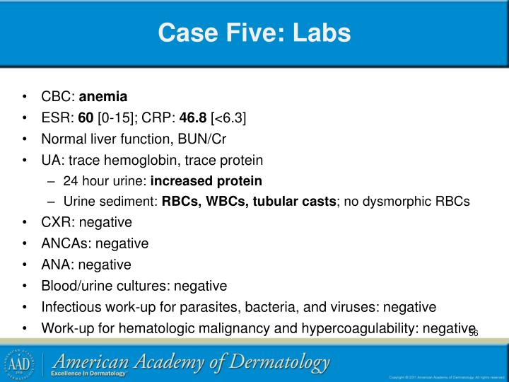 Case Five: Labs