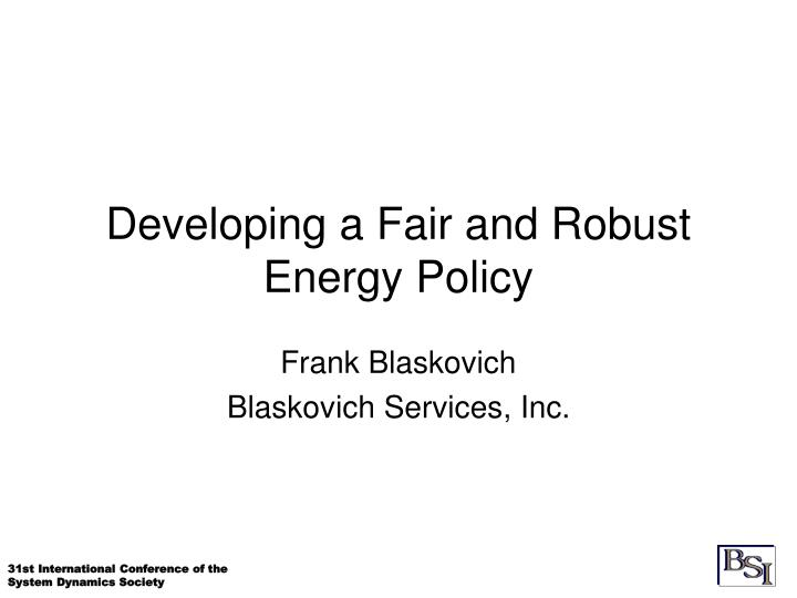 Developing a fair and robust energy policy