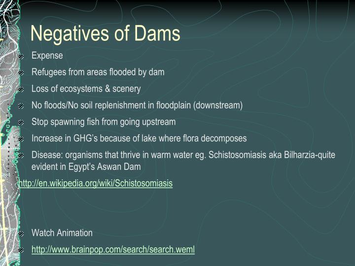 Negatives of Dams