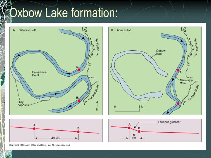 Oxbow Lake formation: