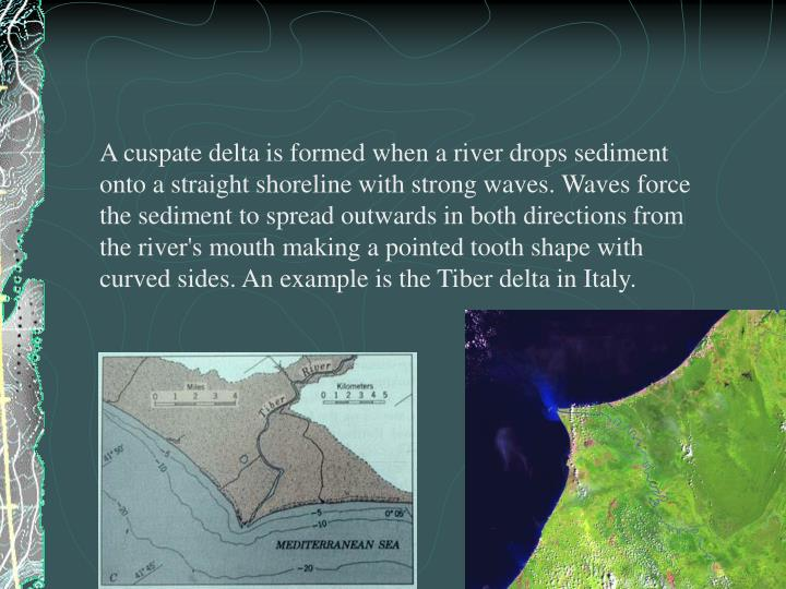 A cuspate delta is formed when a river drops sediment onto a straight shoreline with strong waves. Waves force the sediment to spread outwards in both directions from the river's mouth making a pointed tooth shape with curved sides. An example is the Tiber delta in Italy.