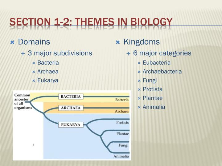 Section 1-2: themes in biology
