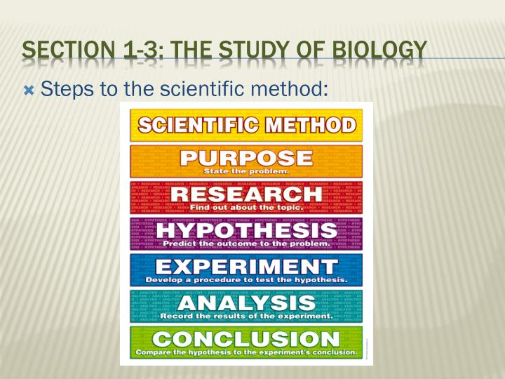 Steps to the scientific method: