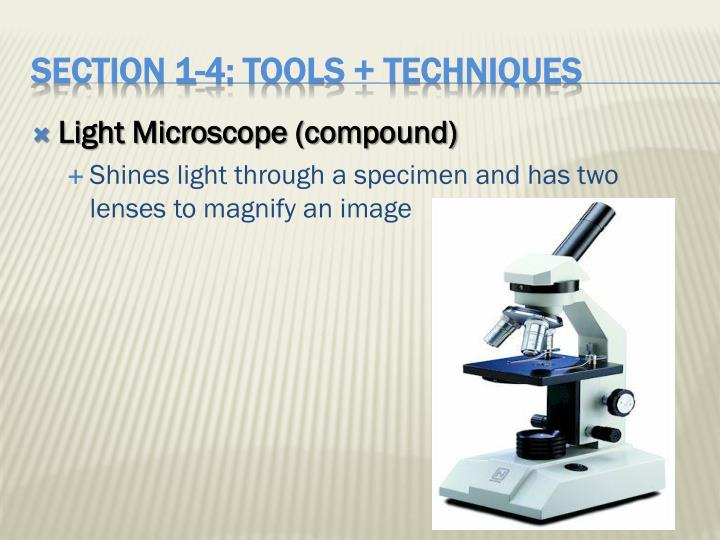 Light Microscope (compound)