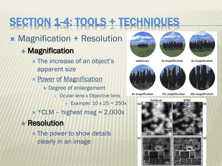 Magnification + Resolution