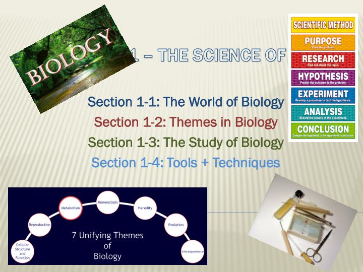 Section 1-1: The World of Biology