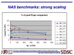 nas benchmarks strong scaling1