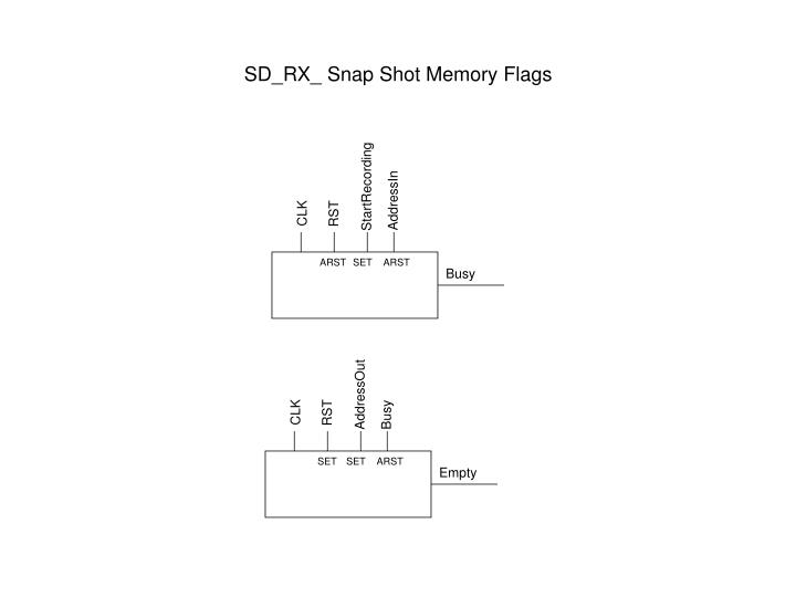 SD_RX_ Snap Shot Memory Flags