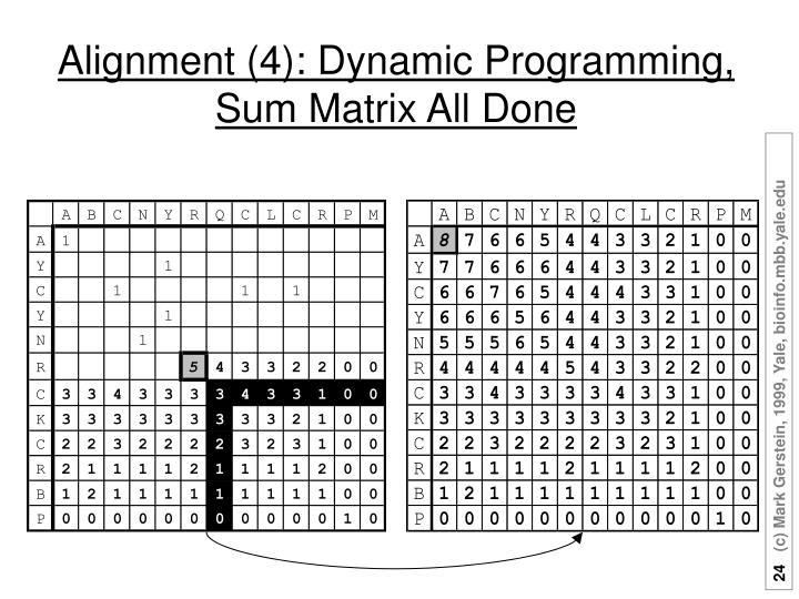 Alignment (4): Dynamic Programming,