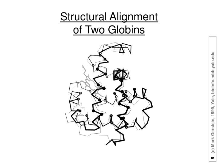 Structural Alignment