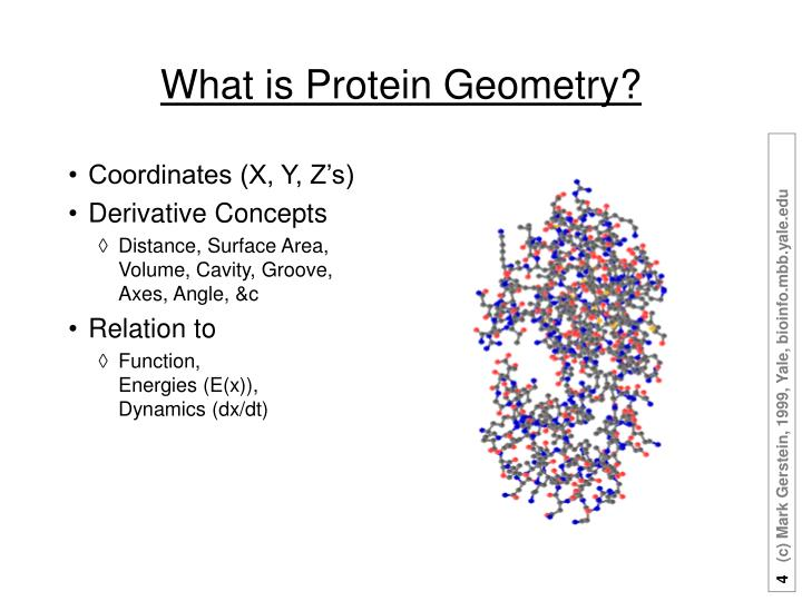 What is Protein Geometry?