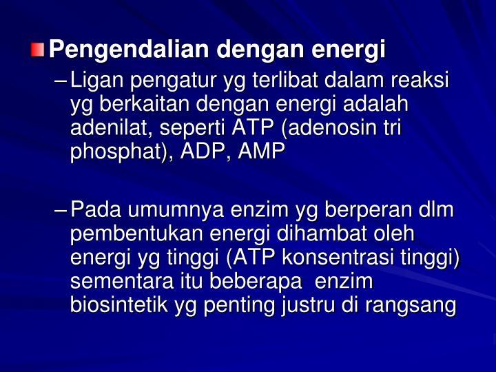 Pengendalian dengan energi