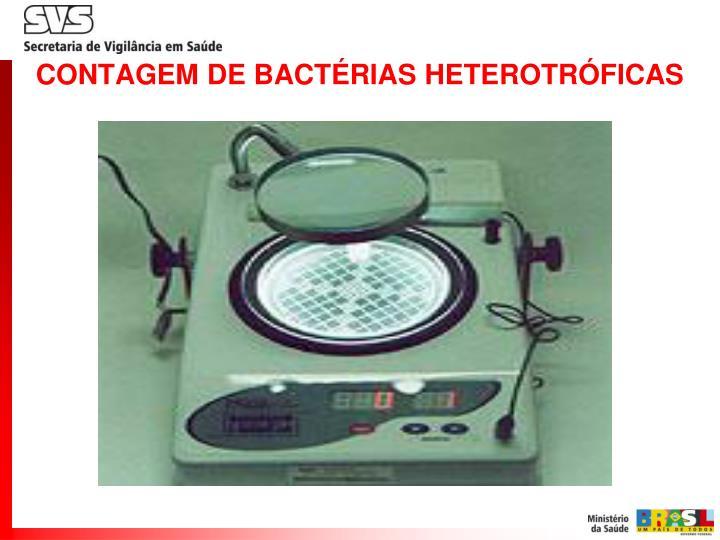 CONTAGEM DE BACTÉRIAS HETEROTRÓFICAS