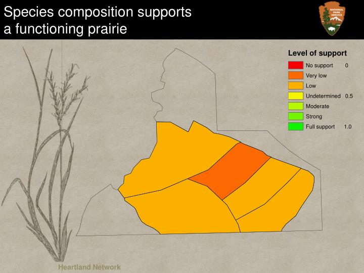 Species composition supports