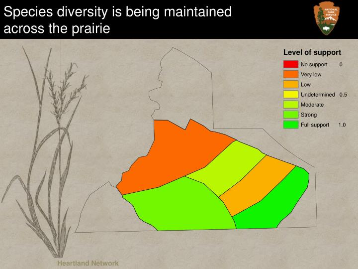Species diversity is being maintained