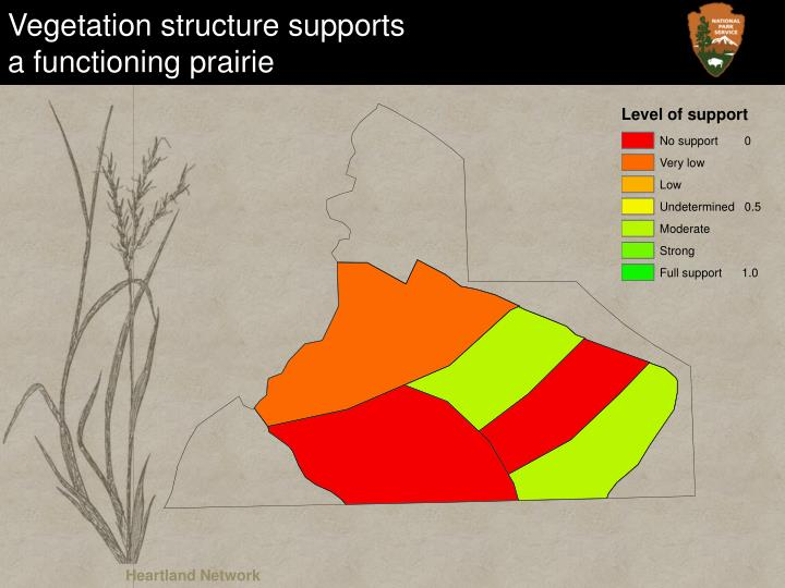 Vegetation structure supports
