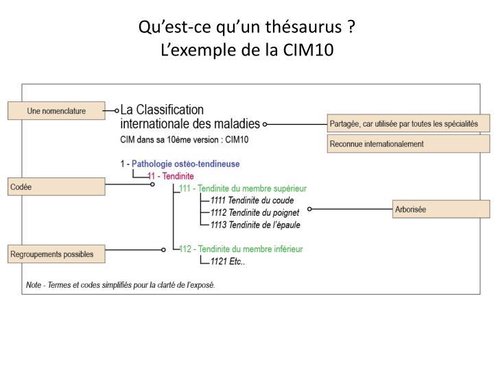 Qu'est-ce qu'un thésaurus ?