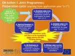 em action 1 joint programmes preparation cycle starting from application year n 1