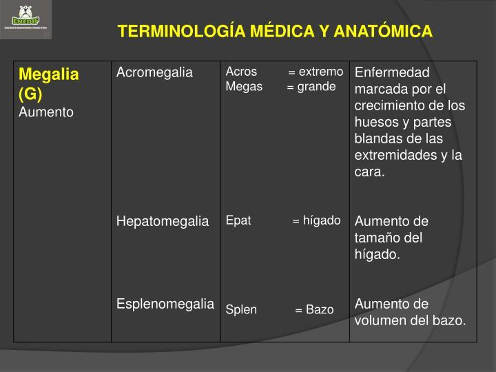 PPT - MÓDULO 2 GENERALIDADES ANATOMOFISIOLÓGICAS PowerPoint ...