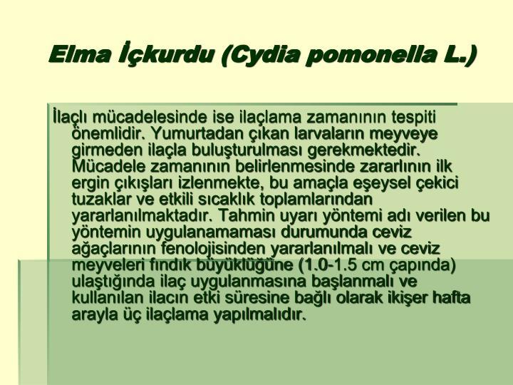 Elma İçkurdu (Cydia pomonella L.)