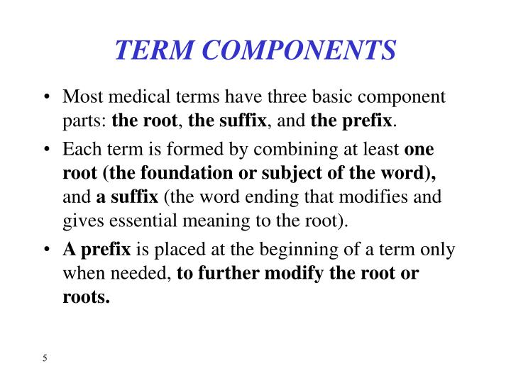 TERM COMPONENTS