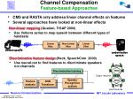 channel compensation feature based approaches