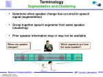 terminology segmentation and clustering