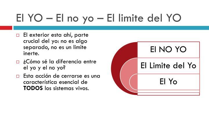 El YO – El no yo – El limite del YO