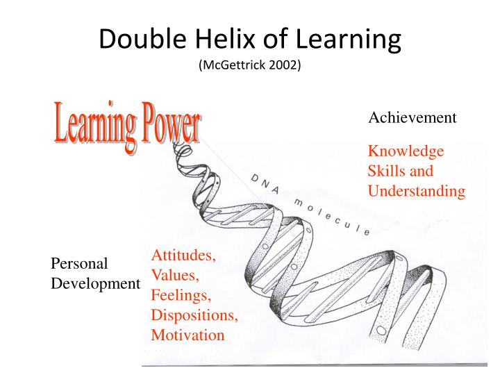 Double helix of learning mcgettrick 2002
