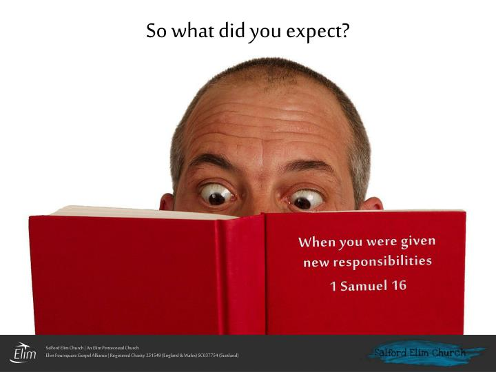 samuelle so you like what you see free download