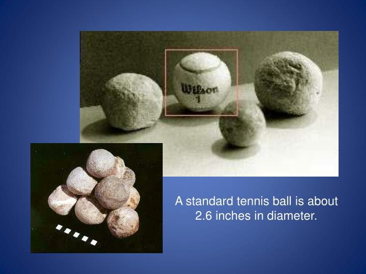 A standard tennis ball is about 2.6 inches in diameter.